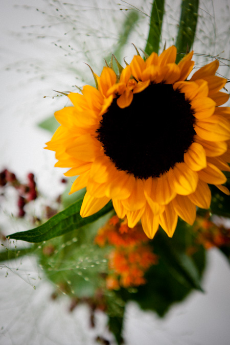 Blumen fuer Inga