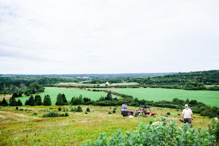 Wilde Blaubeeren aus Kanada - ein Reisebericht - www.kuechenchaotin.de-28